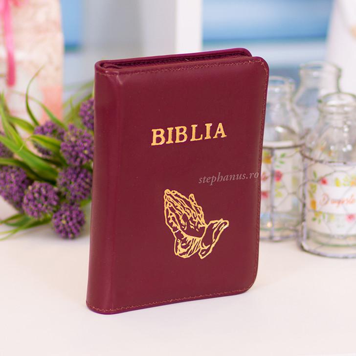 Biblia mica (visiniu).