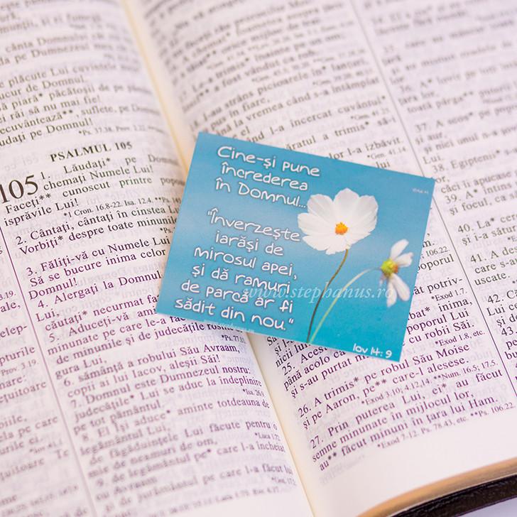 Semn carte: Cine-si pune increderea in Domnul