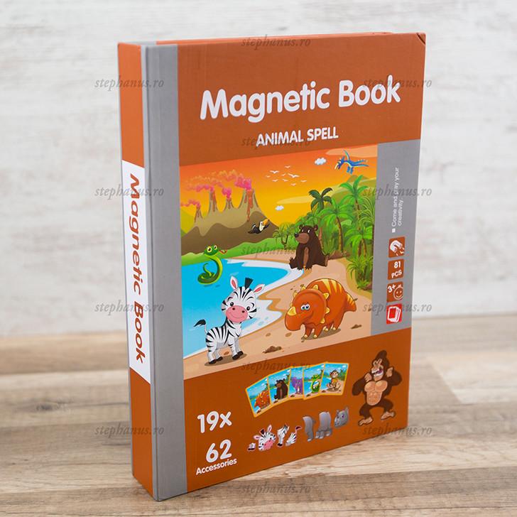 Carte magnetica