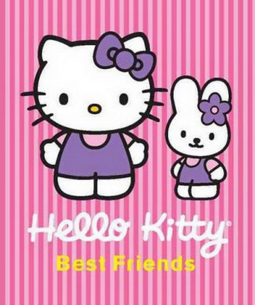 Hello Kitty Best Friends Hardcover Book 37016