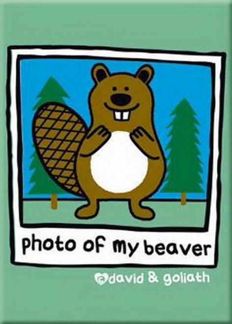 David and Goliath Beaver Photo Magnet 29803DG