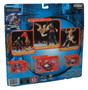 WWE Final Count Series 1 Litacnrana Lita & Matt Hardy Jakks Pacific Figure Set