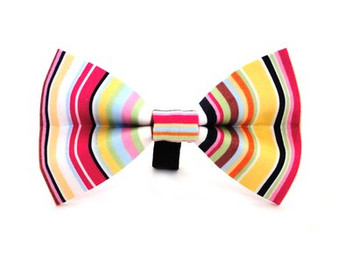 Ditsy Pet Padstow Dickie Bow