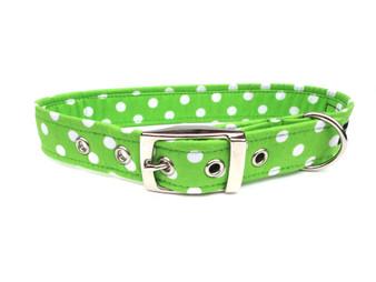 Ditsy Pet Green Spotty Dog Collar