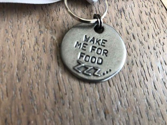 Mutts & Hounds Dog Tags