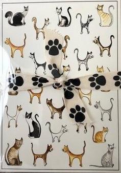 Note Card Pack - Multi Cat