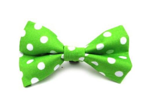 Ditsy Pet Green Spot Dickie Bow
