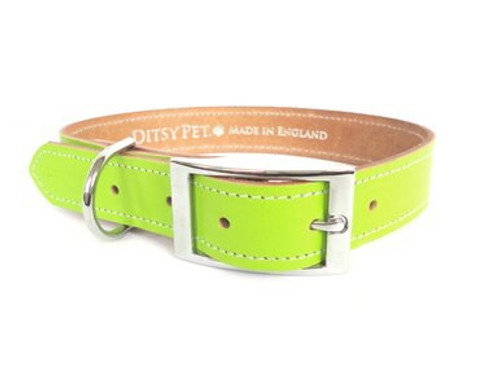 Ditsy Pet Green Leather Collar
