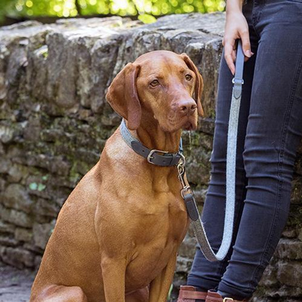 Mutts & Hounds Stoneham Tweed Dog Collar