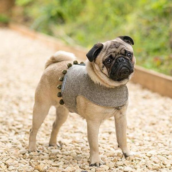 Mutts & Hounds Grey Tweed Pom Pom Harness
