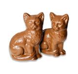Belgian Chocolate Kittens