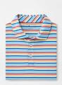 Palm Cove Aqua Cotton Polo in Multi by Peter Millar