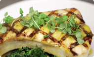 Grilled Swordfish with Earth & Vine Mango Tequila Jalapeno Grilling & Dipping Sauce