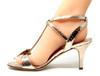 Franca Gold Shoe
