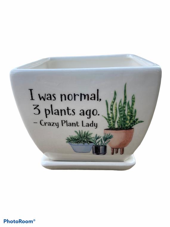 """I Was Normal - 5"""" Ceramic Pot w/ Saucer"""
