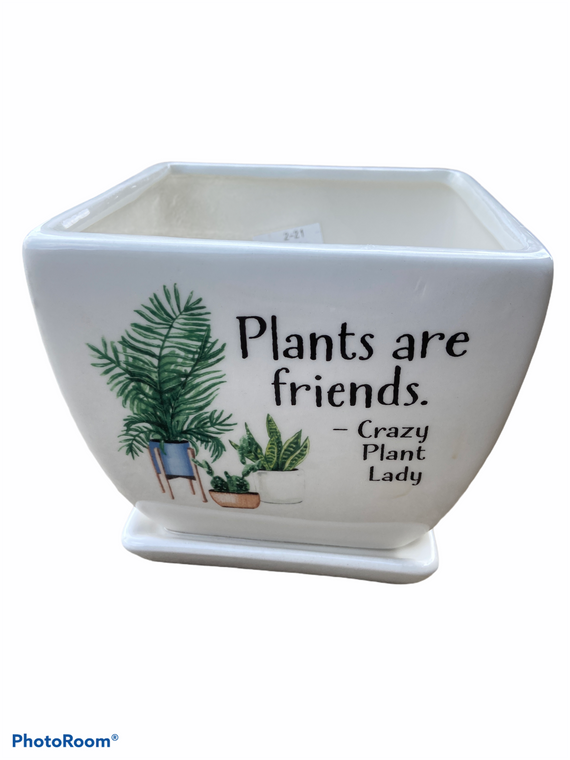 "Plant Are Friends - 5"" Ceramic Pot w/ Saucer"