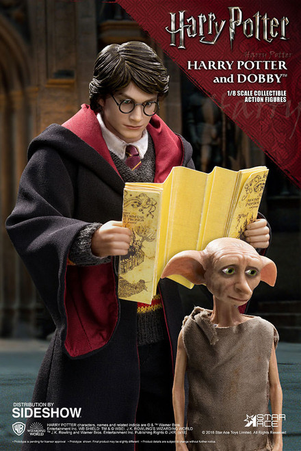 SA8011B Harry Potter & Dobby 1