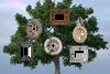 """""""Family Tree"""" Digital Backdrop"""