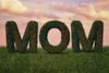 """Mom"" Mother's Day Digital Backdrop"