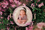 """Azalea Basket"" A Darling Collection Digital Backdrop"