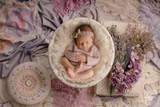 """Lavender Dream Nest"" A Darling Collection Digital Backdrop"