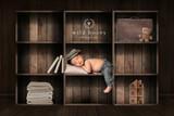 """Bookcase Naptime"" Digital Backdrop"