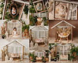 """""""The Greenhouse"""" Darling Collection Digital Backdrops"""