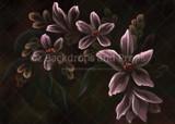 Botanica - The Garden Collection