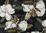 Black Magnolia Part One