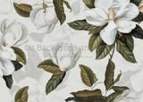 White Magnolia Part Two