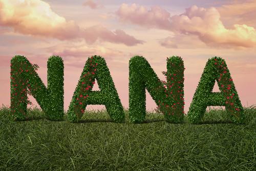 """Nana"" Mother's Day Digital Backdrop"