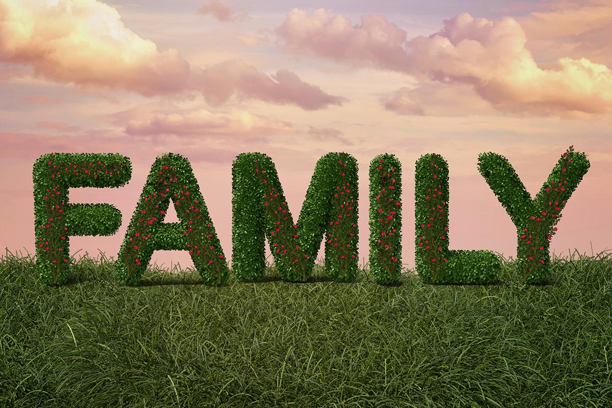 """Family"" Digital Backdrop"