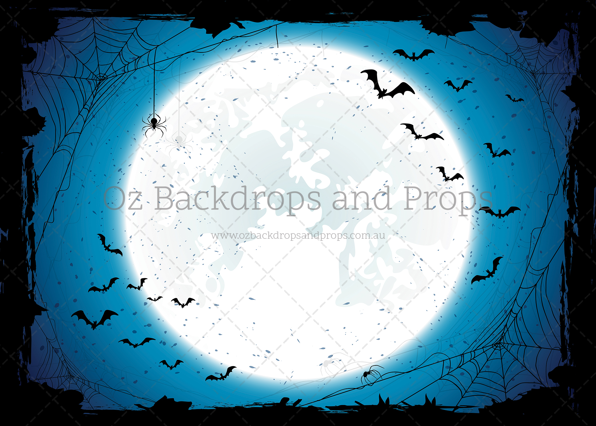 Spooky Spiders and Bats