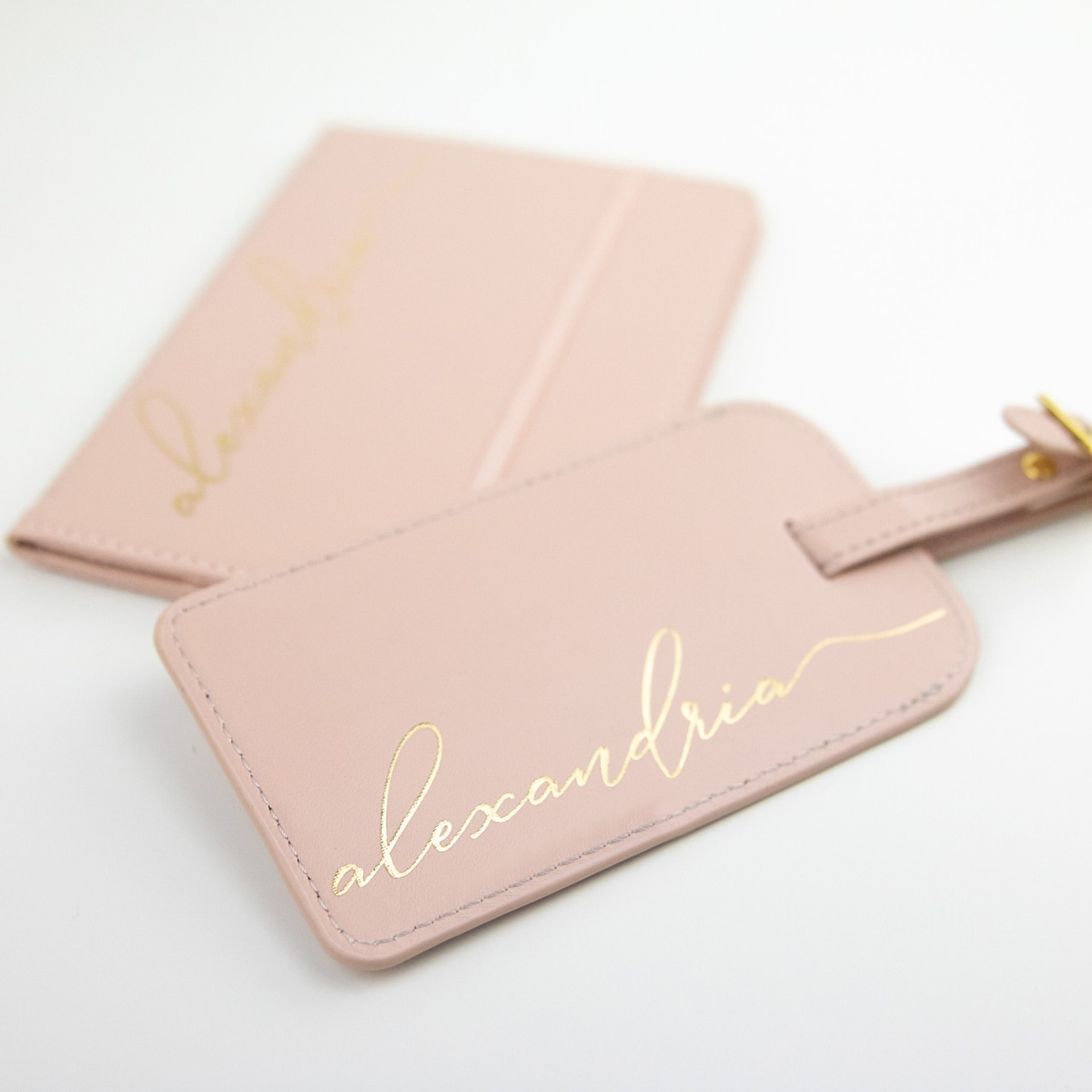 Blush Luggage Tag + Passport Holder