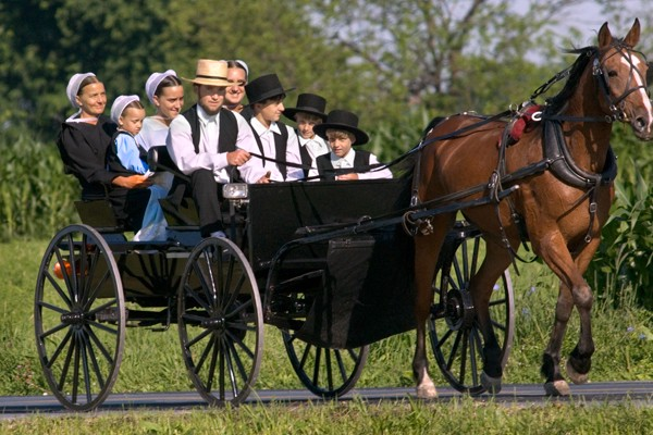 Top Four Amish Communities in the US - Tennessee Wholesale
