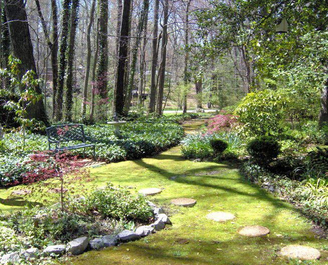 The Benefits Of Moss In Your Landscaping And Gardening Tennessee