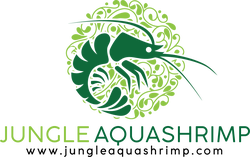 Jungle Aquashrimp
