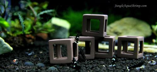 Aquarium Fish Shrimp Cubes (Small) Clay Shelters Hiding and Breeding Cave - 5 pieces