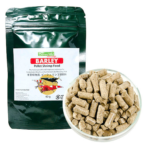 BorneoWild Barley 40g