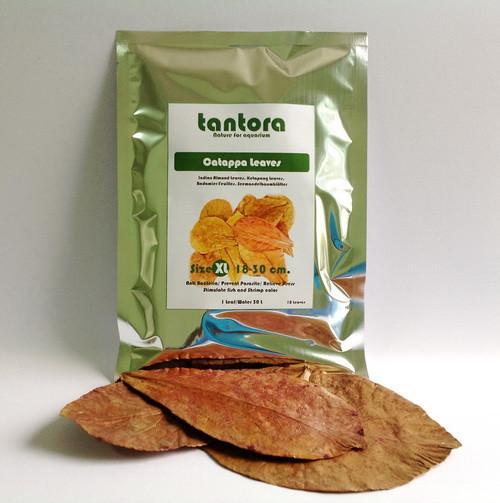 Tantora XL Catappa Leaves