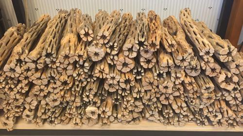 Aquarium Cholla Wood For Fish Pleco Shrimp Tanks Hermit Crabs