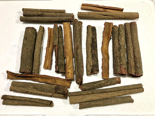 Indian Almond Bark (Catappa Barks)