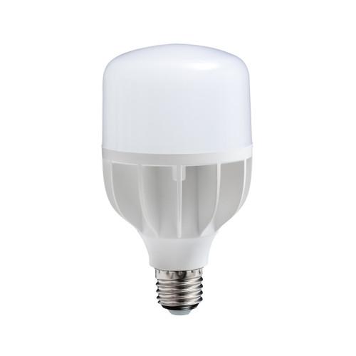 16W Daylight LED Bulb