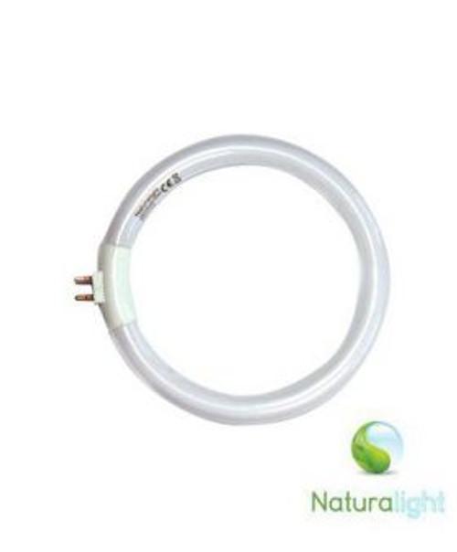 DAYLIGHT 12 Watt Circular Tube for N1040