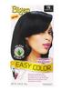 Bigen Easy Color