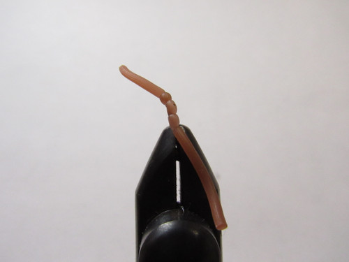 Sqworm Brown Size #12