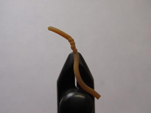 Sqworm Earthworm Size #12