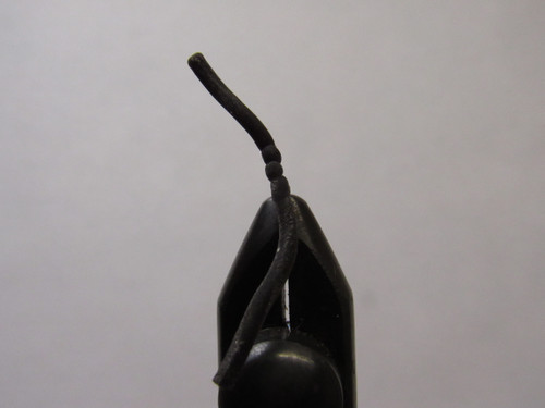 Sqworm Black Size #12
