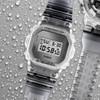 G-Shock DW5600 Skeleton Classic Clear Grey (DW5600SK-1)