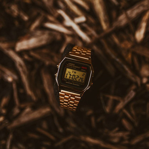 Casio Vintage Digital Black Gold (A159WGEA-1VT)